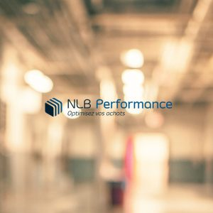 logo NLB Performance