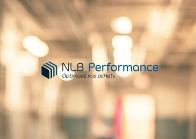 Logo et site NLB Performance